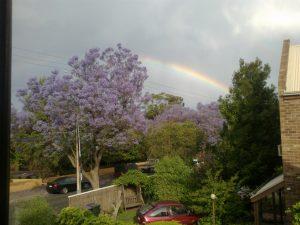 Adelaide, Jacarandas, Rainbow, Spring